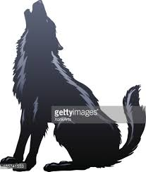 belgian shepherd howling wolf howling silhouette vector art getty images