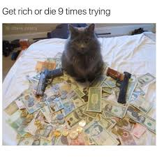 Rich Cat Meme - top 25 thug life cat memes quotes and humor