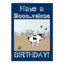 cow greeting cards moo cow birthday greeting cards zazzle co uk