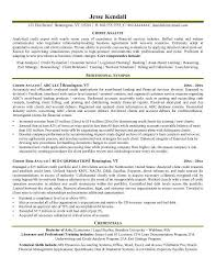 Policy Analyst Resume Sample by Analyst Resume