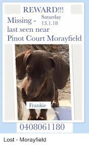 Saturday Memes 18 - reward saturday missing 13118 last seen near pinot court