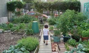 Urban Gardens Community Garden