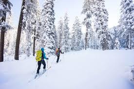 lake tahoe ski tour backcountry ski with alpenglow expeditions