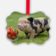 pig ornament cafepress