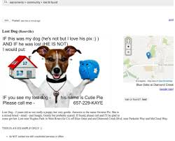 Craigslist Real Estate Ad Templates by Trying To Find A Lost Pet Dog In The Roseville Area Roseville