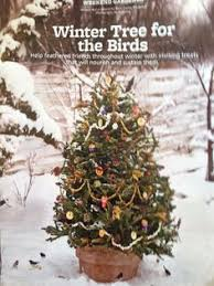 edible ornaments for feeding birds the great outdoors