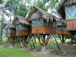 famous tree houses top 10 tree house to stay in malaysia tourplus blog