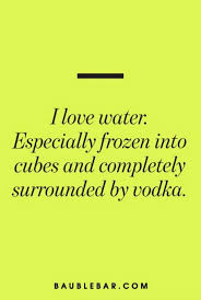 thanksgiving quote funny best 10 vodka quotes ideas on pinterest funny party quotes