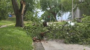 causes damage to trees cars across omaha metro kptm
