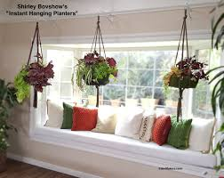 plants awesome indoor wall hanging flower pots top best indoor