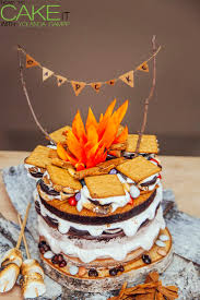 cake how to best 25 cfire cake ideas on cing birthday cake