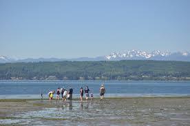 trails u0026 tides tristan baurick the kitsap sun u0027s environmental