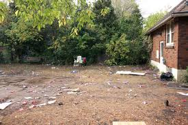 students to replant u0027broughdale grandma u0027s u0027 garden after foco