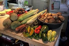 Vegetable Garden Preparation by Soil Preparation For Vegetable Gardens Extension