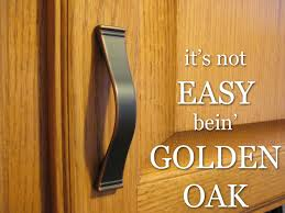 How To Restain Oak Kitchen Cabinets by Download Refinishing Golden Oak Kitchen Cabinets Homecrack Com