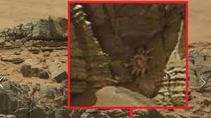 nasa spots u0027alien facehugger u0027 on mars ufo photo tweeted by