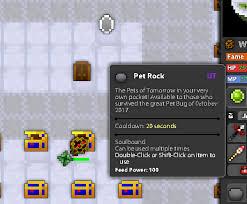 Pet Rock Meme - fixed pet rock description rotmg