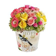 Flower Delivery Nyc Nature U0027s Palette Flower Delivery Nyc Plantshed Com