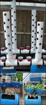 114 best diy aquaponics fish and food images on pinterest