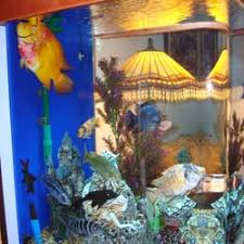 aquarium designs by michael aquariums 10 e willow st millburn