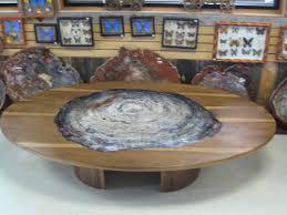 petrified wood tables surripui net