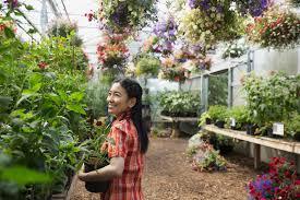 akron area nurseries and garden centers