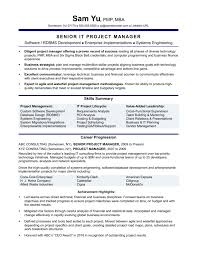 monstercom resume templates resume templates experienced it project manager sle