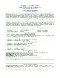 Php Programmer Resume Sample by Resume