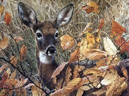 wallpaper deer wallpaper murals http 2 bp blogspot com eaviqbzwc s tn p7sis5li john deere wallpaper