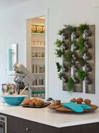 indoor wall garden 7 best wall herb garden images on pinterest for the home