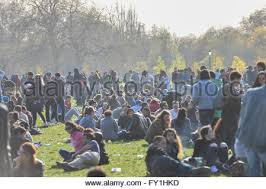 cannabis joint hyde park uk 19th april 2015 a pro stock