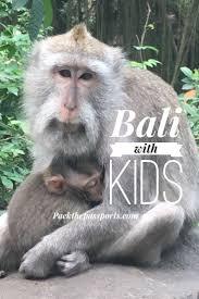 10 best kids adventure park on the east coast of mauritius