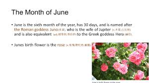 The Month Of June Flower - the 12 months of the year a year has 365 days divided into 12