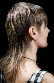 modern day mullet hairstyles mullet for women hairstyle with short layers on the sides and