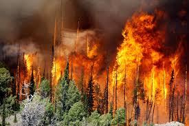 more evacuations in wildfire near utah ski resort town