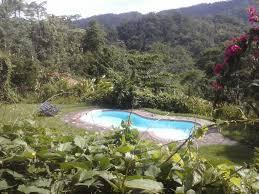 Poolanlagen Im Garten La Cacatua Lodge Uvita Costa Rica Booking Com
