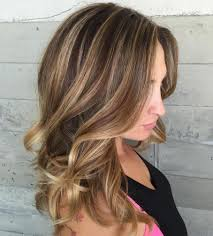 highlights and lowlights for light brown hair appealing light brown hair color ideas with highlights pict of