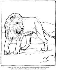 lion coloring page sheet zoo animals coloring pages