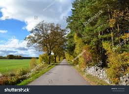 swedish country swedish country road bright day fall stock photo 159410396