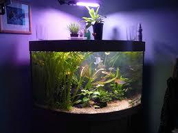 aquarium for home decoration modern aquarium designs for