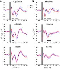 tms eeg signatures of gabaergic neurotransmission in the human