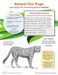 wild world of wolves worksheets montessori materials and word