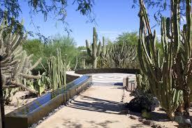 Scottsdale Botanical Gardens Featured Venue Desert Botanical Garden Casey Green Weddings