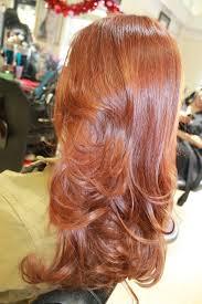 regis nano hair treatment hairhealers miamis best beauty salon best color correction