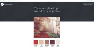 canva color palette ideas the biggest tip for branding as told by nisa aris nimble