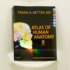 Netter Atlas Of Human Anatomy Online The Best Atlas Of Human Anatomy There Is Boing Boing