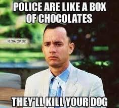 Life Is Like A Box Of Chocolates Meme - police are like a box of chocolates memes