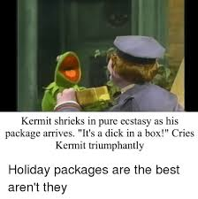 Dick In A Box Meme - kermit shrieks in pure ecstasy as his package arrives it s a dick