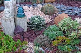 extraordinary drought friendly landscaping gallery best idea