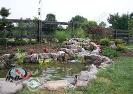 Koi Pond Designs Ideas Koi Pond Design Ideas Koi Pond Design - Backyard pond designs small